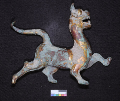 Dragon before conservation
